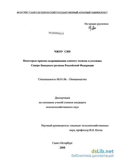 Посадка озимого чеснока осенью под зиму: сроки, схемы, правила, инструкции