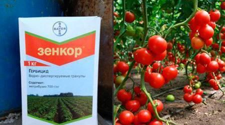 Лучшие гербициды от сорняков для картофеля: список гербицидов, сроки и правила внесения
