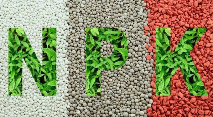 Виды фосфорных удобрений и их применение