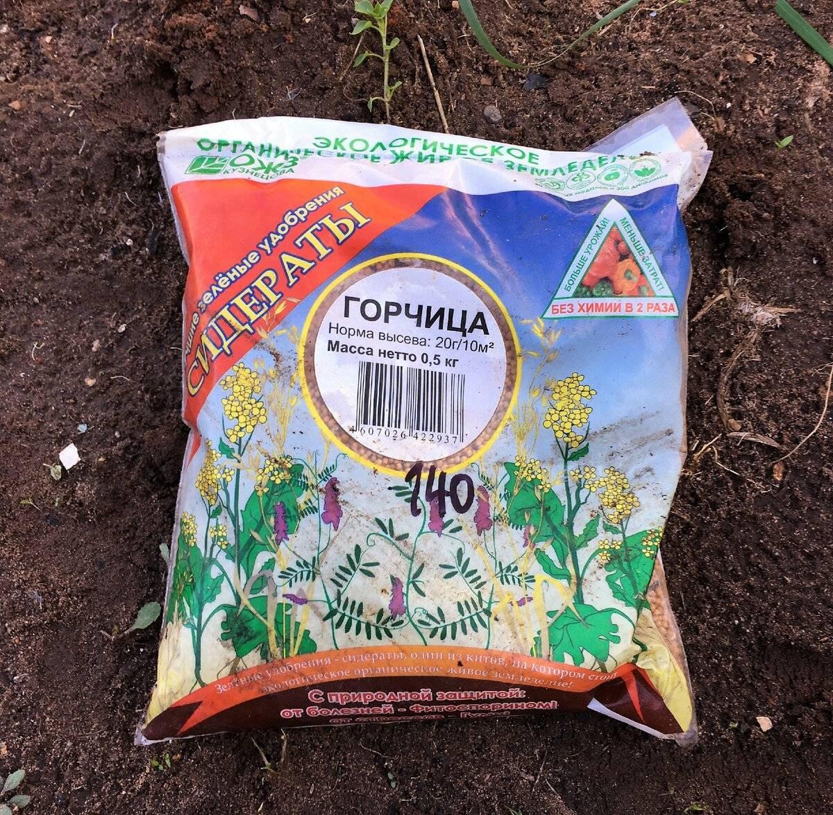 Лучшие сидераты для огорода: 9 отличных растений