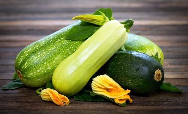 Когда сажать (сеять) кабачки на рассаду по лунному календарю 2018? сроки посадки кабачков в открытый грунт рассадой или семенами