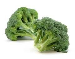 Брокколи: фото, способы и особенности выращивания, сорта и названия