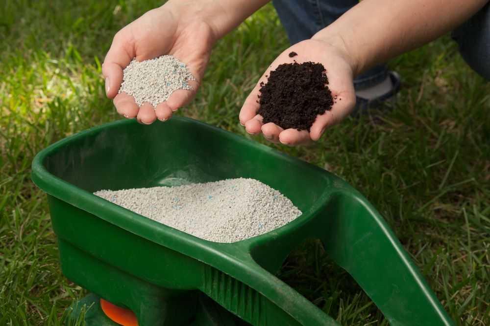 Почему органические удобрения считаются наиболее ценными - ваш сад