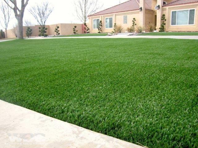 Сеем газонную траву. основные действия при посадке.