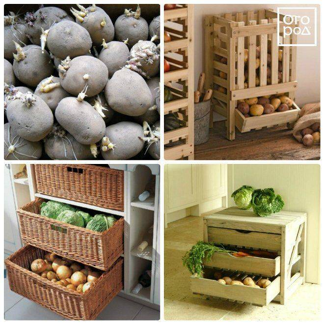 Как правильно хранить картофель в квартире и в доме