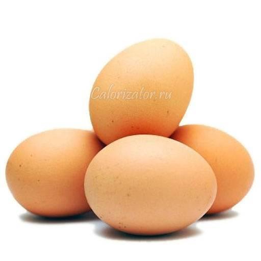 Все о курином яйце: сколько весит, какое количество несет курица в день, схема
