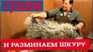 Овечья шкура: как выделать шкуру барана в домашних условиях