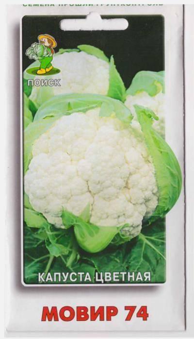 Топ-10 лучших сортов цветной капусты: ранние, среднеспелые и поздние сорта и гибриды
