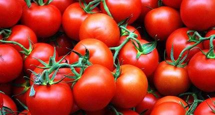 К чему снятся красные помидоры: много, на кустах, свежие, сонник