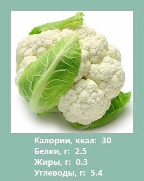 Цветная капуста: калорийность, польза и вред, полезные свойства и противопоказания