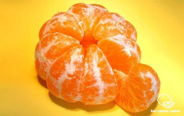 Мандарин - польза и вред, состав, калорийность, содержание полезных веществ. рецепты с мандарином. как вырастить в домашних условиях