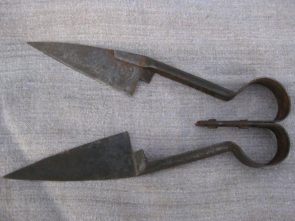 Ножницы для стрижки овец и баранов; использование машинки для стрижки