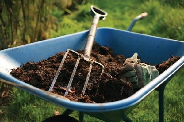 Конский, куриный и иные виды навоза и помета в гранулах: как развести гранулированные экскременты и приготовить удобрение, а также другие способы применения