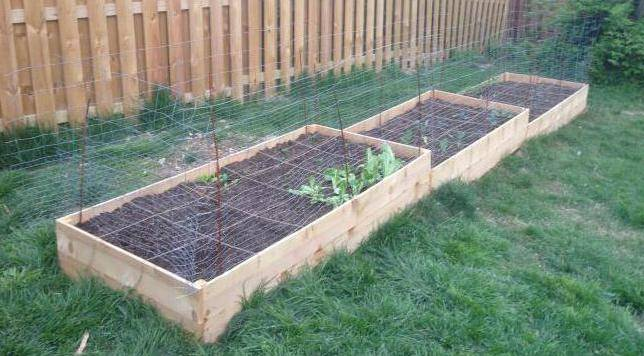 Опилки для огорода: польза и вред, правила применения, как можно использовать сосновые и другие хвойные, а также лиственные