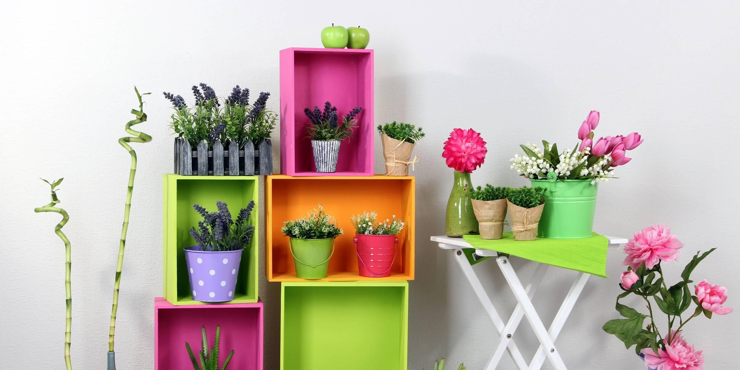 Автополив для комнатных растений – варианты решений