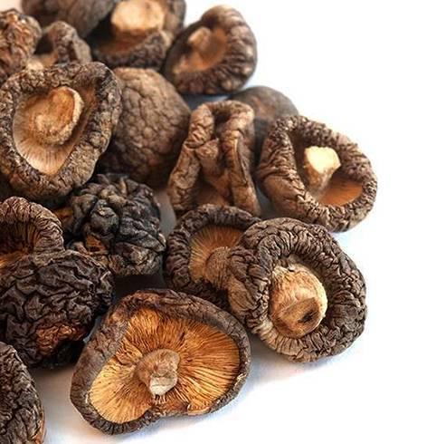 Шиитаке - лечебный гриб: полезные свойства, подробное описание, и выращивание императорского гриба