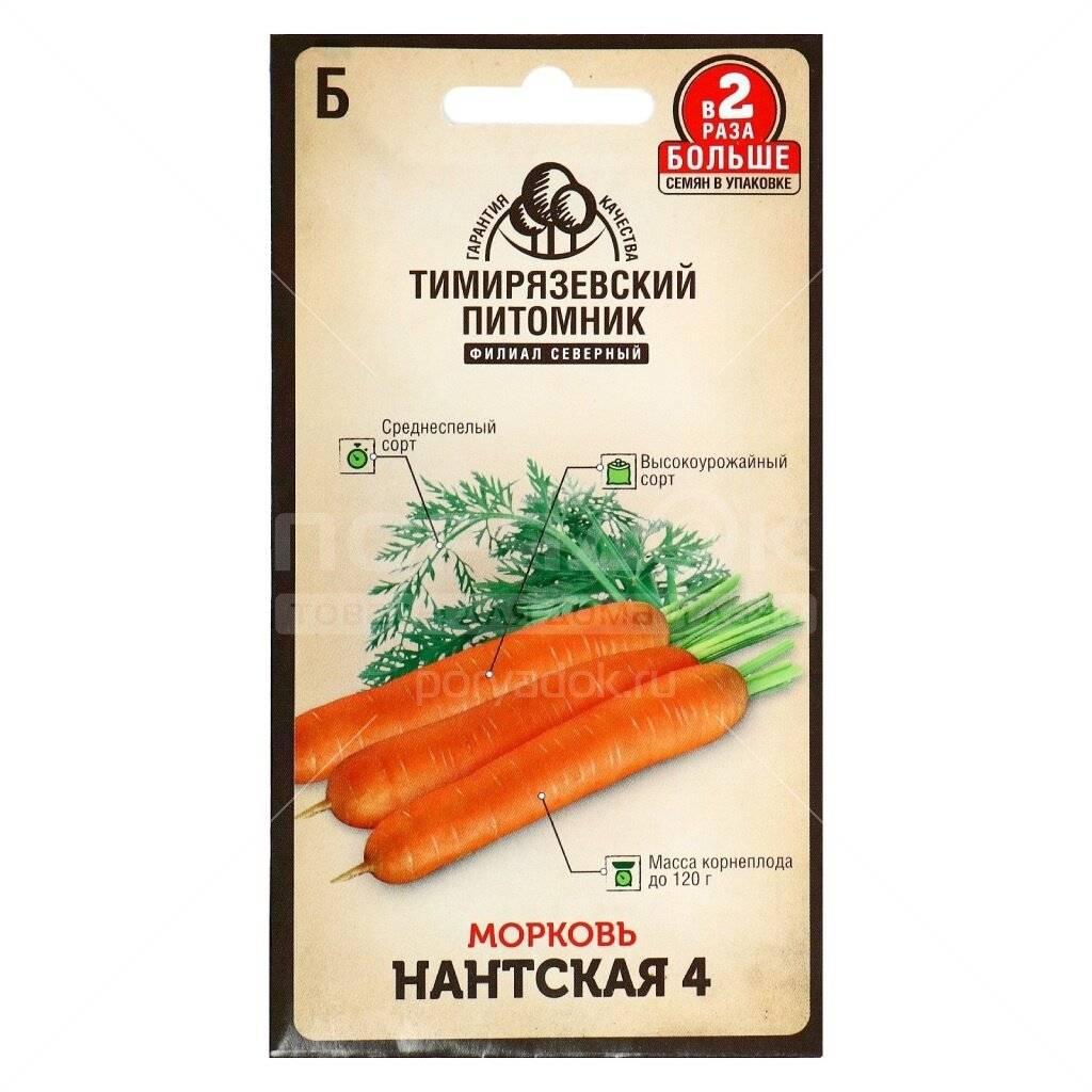 Описание, характеристика и особенности выращивания моркови нантская 4 – лидера по урожайности и содержанию каротина