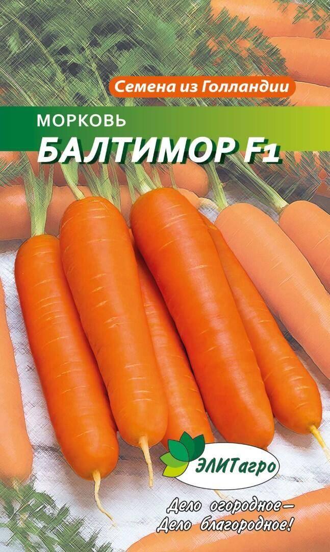 Какого ухода требует морковь балтимор?