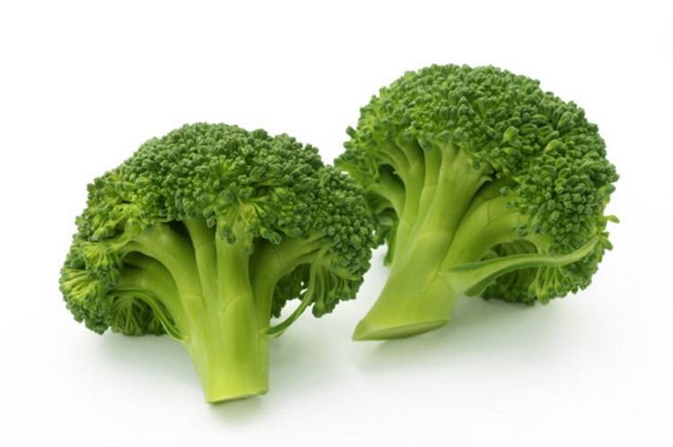 Капуста брокколи: выращивание, уход, правильная агротехника в открытом грунте