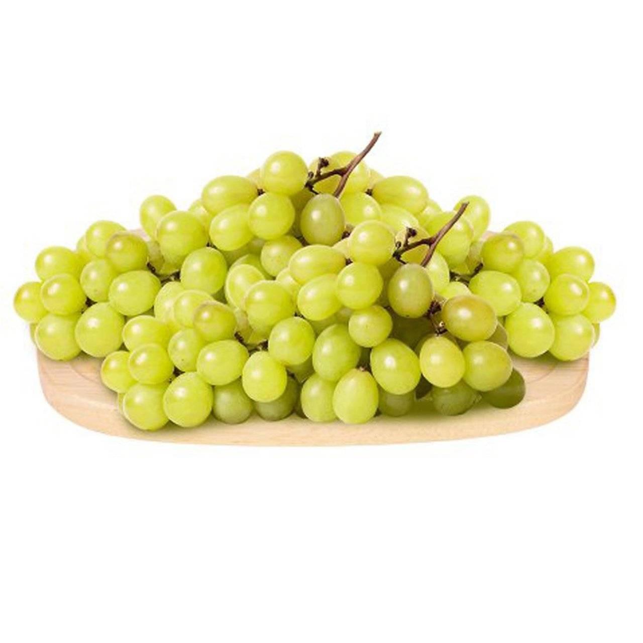 Как размножается виноград без косточек