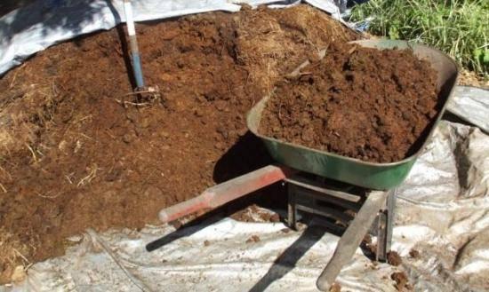 Переработка навоза: лучшие способы утилизации коровьих, свиных и других экскрементов, а также птичьего, в том числе куриного помета в хозяйствах и на фермах