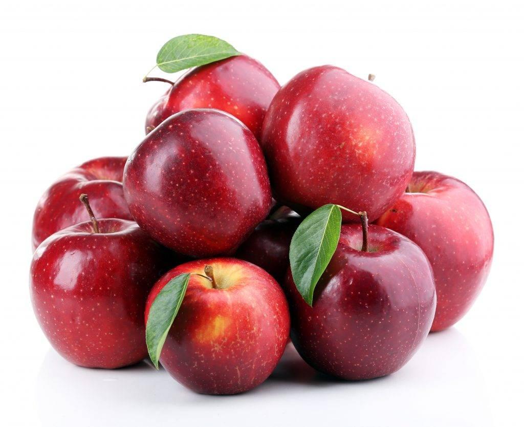 Яблоня память сикоры — правила выращивания