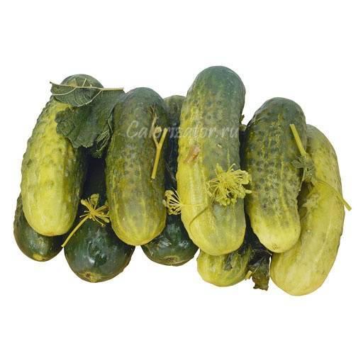 Огурцы — химический состав, пищевая ценность