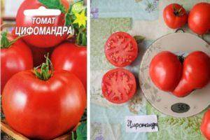 Томат бони мм: характеристика и подробное описание сорта