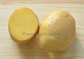 Сорт картофеля венета: характеристика, отзывы
