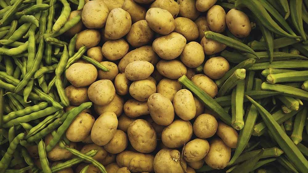 Польза и вред картофеля для здоровья человека, калорийность