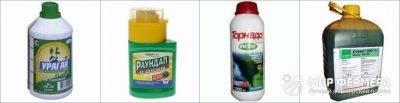Соль и уксус от сорняков: дешево и эффективно!