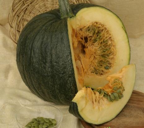 Голосемянная тыква: характеристики и описание сортов, выращивание