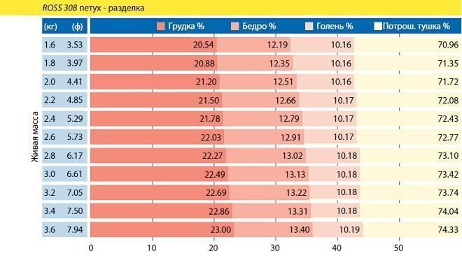 Таблица набора веса и описание бройлеров породы РОСС 308