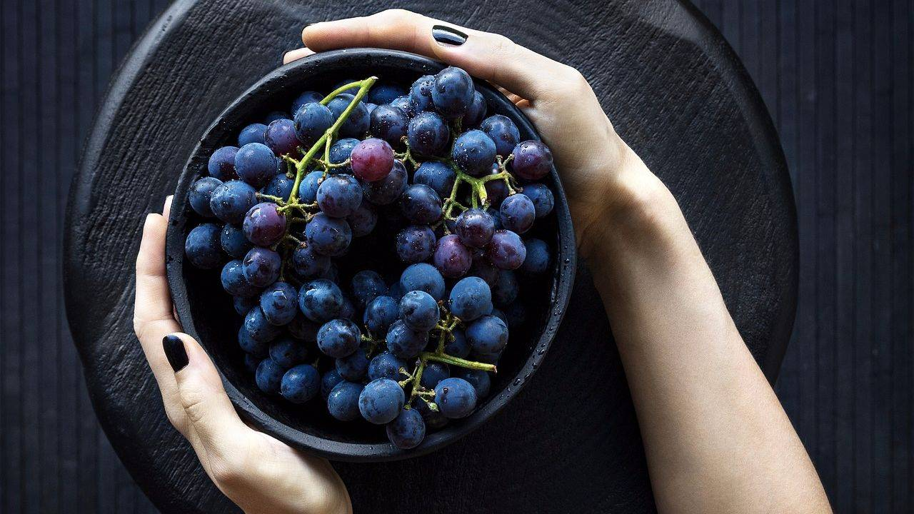 Что лечит лист винограда. лечебные свойства растения для организма