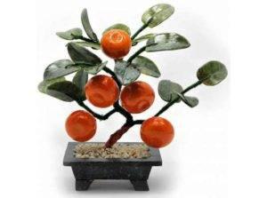 Суеверия и приметы при выращивании цитрусовых растений