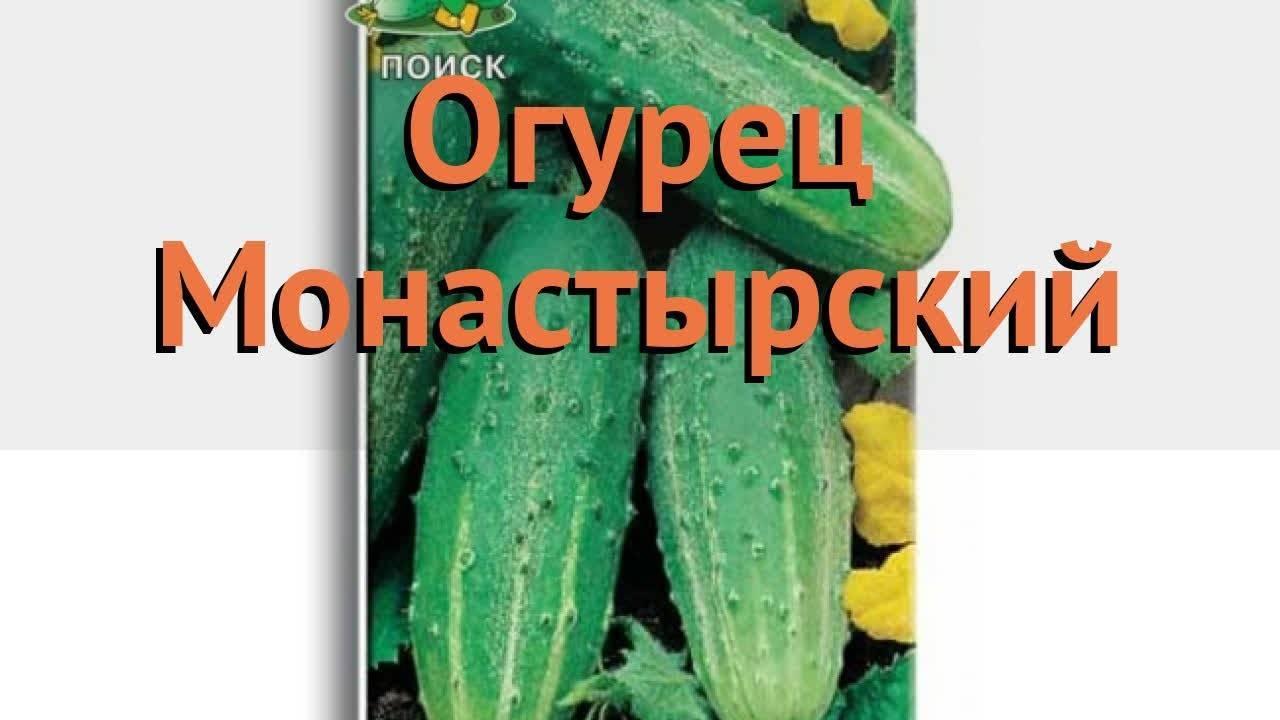 Огурцы сын полка: описание и характеристика сорта, отзывы садоводов с фото
