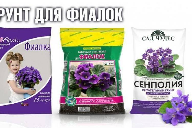 Грунт сенполия для каких цветов подходит. составление грунта для фиалок. как выбрать готовый покупной грунт