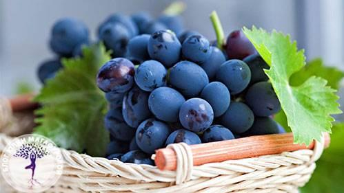 Виноградный сок: состав, калорийность и польза | food and health