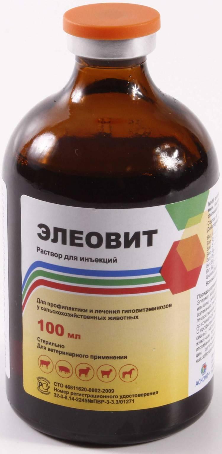 Значение витаминов в жизни телят