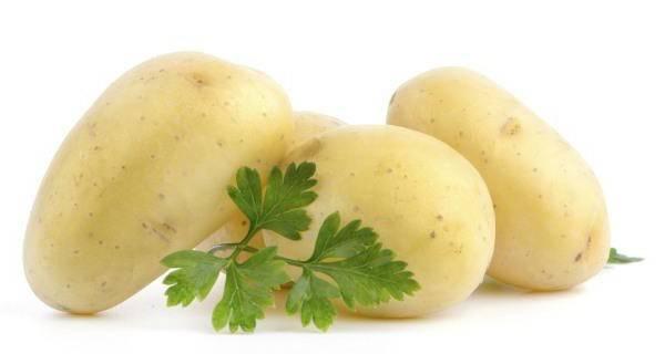Определение химического состава картофеля - мыдачники