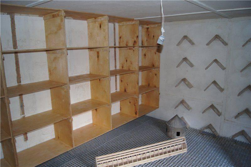 Гнезда для голубей (28 фото): размеры. как правильно сделать пластиковое или керамическое круглое гнездо для голубей на балконе? из чего состоит гнездо голубя?