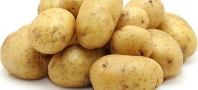 Картофель императрица: описание сорта, посадка, уход, фото, отзывы