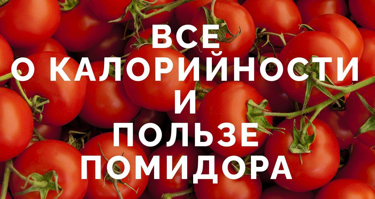Калорийность помидора на 100 грамм, бжу, польза и вред для организма