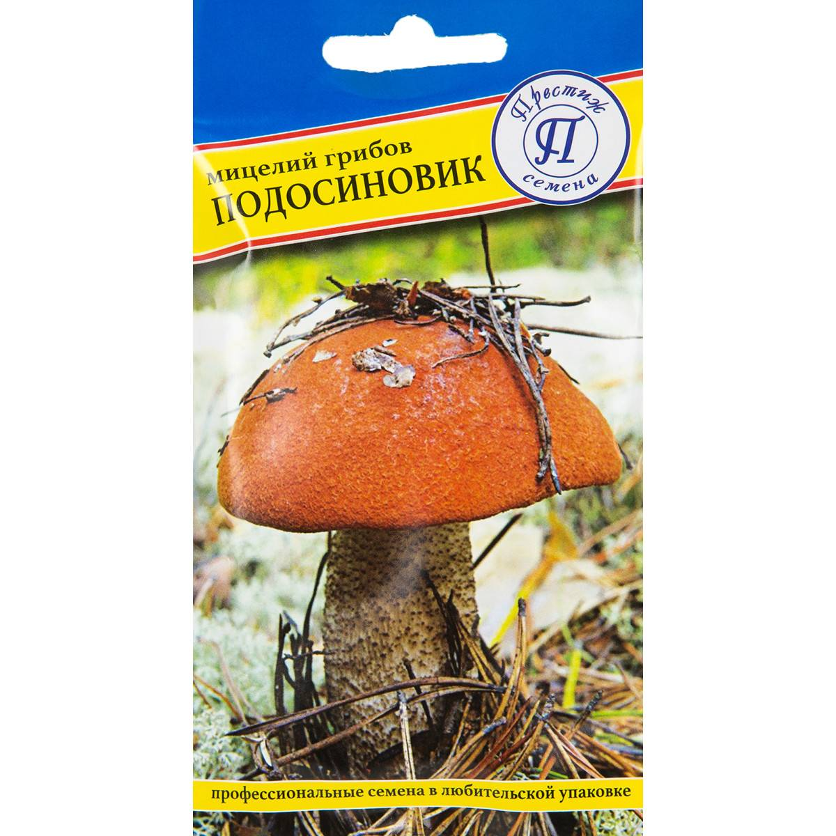 Подосиновик белый – гриб из красной книги
