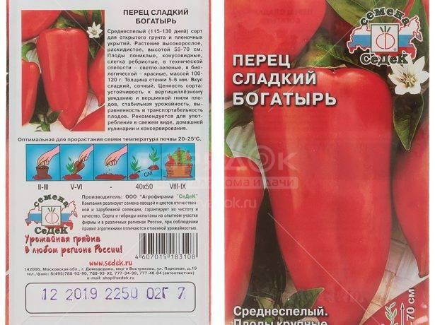 Перец богатырь: характеристика и описание сорта, инструкция по выращиванию богатого урожая сладкого овоща, полезные советы