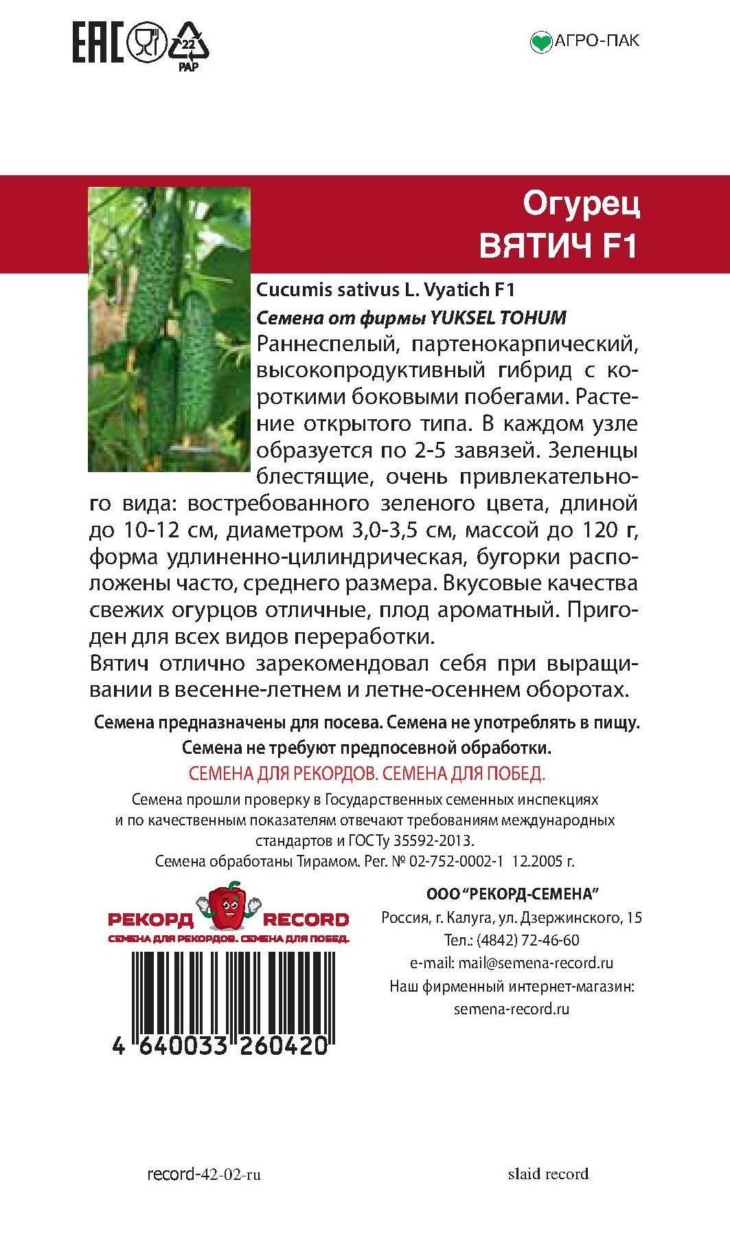Огурец вятский f1: описание сорта, посадка, уход, фото