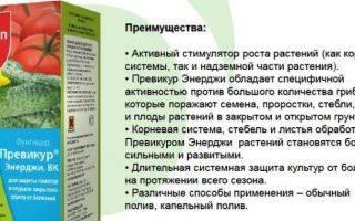 Превикур энерджи: инструкция по применению фунгицида, отзывы, цена