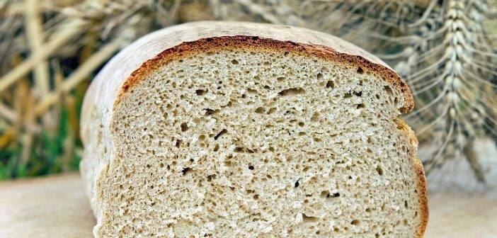 Как подкормить огурцы хлебом