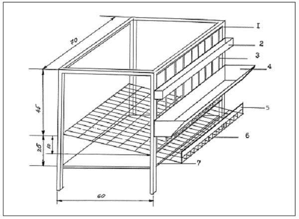 Строим клетку для перепелов своими руками из различных материалов