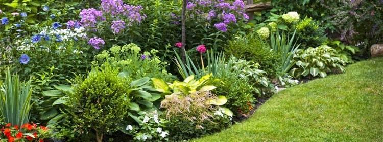 Как и чем раскислить почву на огороде весной?